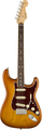 Fender American Pro Strat RW Ltd (honey burst)